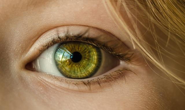 Augenpflege in Gifhorn